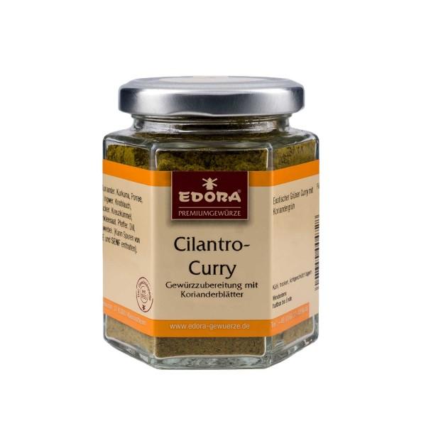 Curry Cilantro Gewürzzubereitung
